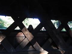 DSCN3681 (dishfunctional) Tags: vermont covered bridge creamery