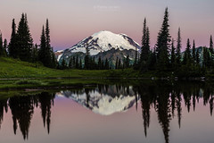 Mount Rainier Alpenglow at Tipsoo Lake (PIERRE LECLERC PHOTO) Tags: mountrainier mtrainier rainier rainiernationalpark tipsoolake lake nature dawn alpenglow morning sunrise landscape naturalbeauty naturalwonders outdoors adventure travel explore reflection calm mountain peak glaciers glaciatedpeak snowcappedmountain pierreleclercphotography canon5dsr metalprints canvasprints framedprints acrylicprints wilderness washingtonstate pacificnorthwest alpine water silhouetteoftrees roadtrip