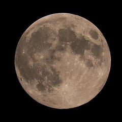 Moon 2018-06-27 (nicklucas2) Tags: astrophotography moon moon2018 moonjun2018 full