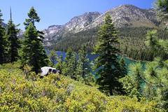 IMG_3975r3 (Steve Perdue) Tags: laketahoe rubicontrail emeraldbay perdue
