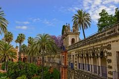Les jardins de l'alcazar de Séville !!! (thierrymazel) Tags: alcazar real jardin garten seville sevilla espagne andalousie architecture