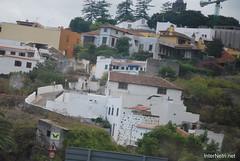Ікод-де-лос-Вінос, Тенеріфе, Канарські острови  InterNetri  146