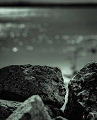 stoneface (Sharkland) Tags: stone face öregrund ansikte uppland nikon d750 landskap landscape monochrome bokeh sten vatten sea ahlenphotography water deep skärgård
