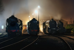 LNER Pacific's on shed. (photofitzp) Tags: 60007 60009 60163 60532 a1 a2 a4 nigelgresley nightphotography photocharter railways russhillier smoke steam barrowhillroundhouse