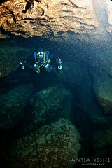 IMG_0267 (2) (SantaFeSandy) Tags: cow cowsink guybryant sandrakosterphotography sandrakosterphotographycom sandykoster sandra scuba santafesandysandrakosterphotographycom swimmers swim canon ikelite laraville mayo nsscds sandrakoster cave cavern camera catfish caves cavedivers underwaterphotography underwater experiment sidemount runningline reels wetsuit drysuit scubapro scubadiving scubadivers bare nomad nomadltz nomadls clay claybanks selfie