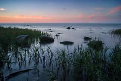 Baltic Sea (martha hoo) Tags: balticsea ostsee natur nature beach strand wasser water landscape landschaft langzeitbelichtung longexposure