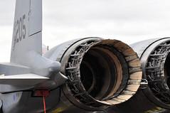 McDonnell Douglas F-15E 'Strike Eagle' 96-0205 Coded 'LN' (A380spotter) Tags: tail tailfin verticalstabiliser rudder nozzle nozzles petals exhaust afterburners prattwhitney f100229 turbofan jet engine powerplant mcdonnelldouglas boeingdefensespacesecurity f15 f15e strikeeagle 960205 ln codedln 492ndfs 492ndfightersquadron 48thfighterwing unitedstatesairforceseurope usafe unitedstatesairforceusaf unitedstatesofamerica usa staticdisplay fia18 farnboroughinternationalairshow2018 taglondonfarnboroughairport eglf fab