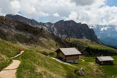 Das sieht doch aus wie Südtirol...? (Steffen Knalltüte) Tags: italien alpen olympusomdem5mkii seiseralm südtirol sommer altoadige