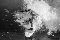 Surfer Splash (Santa Cruz Pictographer) Tags: surf surfer surfing surfboard board sports sport water ocean sea california coast coastal beach shore wave waves foam splash drops droplets focus contrast wet wetsuit skill black white bw blackwhite grey gray monochrome