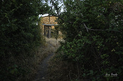 La senda (Luis R.C.) Tags: bellidas pueblos abandono paisajes edificios ruinas nikon d610