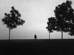 Couple by the Windy Lake (Sean Anderson Media) Tags: superheadzdigitalharinezumi superheadz digitalharinezumi lofi lofidigital blackandwhite grainy monochrome silhouette couple walk trees windy lakefront lakemichigan chicago park stark landscape simple