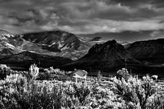 Life on the High Desert Utah in the Presence of the La Sal Mountains (Black & White) (thor_mark ) Tags: alonglasallooprd anseladamslookfromcapturenx2 azimuth140 blackwhite blueskies bluesskieswithclouds canvas canyonlands capturenx2edited cloudsaroundmountainpeaks cloudsaroundmountains colorefexpro coloradoplateau day5 desertgrassland desertlandscape desertmountainlandscape desertplantlife desertprairieland electricpole electricpowerline electricpowerlines grandcounty highdesert home intermountainwest lasallooprd lasalmountainloop lasalmountainlooproadscenicbackway lasalmountains landscape layersofrock lookingse mantilasalnationalforest mountainpeak mountains mountainsindistance mountainsoffindistance mountainside nature nikond800e outside partlycloudy portfolio project365 rollinghillsides sunny trees utahhighdesert utahnationalparks2017 utilitypole ut unitedstates