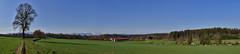 Grünes Schwaigwall (Helmut Reichelt) Tags: kühe gebirge berge felder morgen sonne frühling april schwaigwall grün geretsried bayern bavaria deutschland germany leica leicam typ240 captureone11 colorefexpro4 leicasummilux50mmf14asph panorama