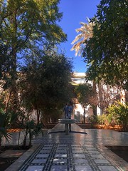 🐱 MOROCCO 🐱 (butterinfly) Tags: morocco agadir marrakesh ouarzazate tinghir fes chefchaouen tangier merzouga