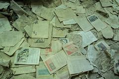 0618 Kiev & Chernobyl  (170) (ChrisJS2) Tags: ukraine chernobyl nuclear chernobyldisaster pripyat ghosttown nucleardisaster devastation sublime