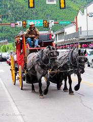 The Horse Ride (Manchiraju) Tags: horses jacksonhole cityofjackson wyoming grandteton