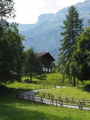 Ballenberg (M_Strasser) Tags: ballenberg schweiz switzerland suisse svizzera olympus olympusomdem1