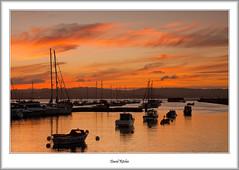 Boats In Brixham Sunset (flatfoot471) Tags: 2016 boats brixham devon dusk england holiday july marina normal summer sunset unitedkingdom gbr