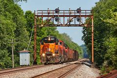 867 South - Branchton (benpsut) Tags: branchton slipperyrock searchlight ble ble867 trains railroad bessemerandlakeerie bessemer cnbessemerandlakeeriesub cn 867 signal signalbridge searchlights