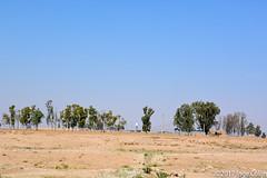 20180330-_DSC0034.jpg (drs.sarajevo) Tags: farsprovince ruraliran iran sassanidpalace
