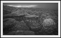 rock life (Andrew C Wallace) Tags: rocks ir infrared thebalconies grampiansnationalpark gariwerd victoria australia thephotontrap olympusomdem5 microfourthirds m43