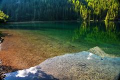 Colori a Tovel (giannipiras555) Tags: riflessi colori natura lago tovel