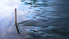 20120530-_MG_5317-5D210-TJ-fotoist-de (tobias jeschke fotoist.de) Tags: flus halle kröllwitz landschaft langzeitbelichtung saale wasser wehr