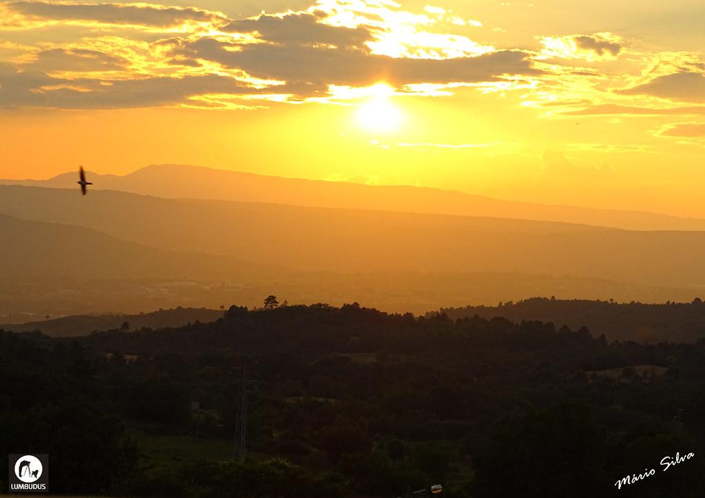 Águas Frias (Chaves) - ... pôr do sol  e a andorinha esvoaçando ...