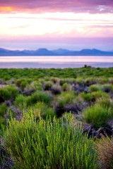 Desert and lake colors together (CsiziPhoto) Tags: