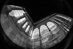 HdK (genelabo) Tags: fisheye fischauge hdk hausderkunst building architecture perspective sw bw scharz weiss black white monochrome india indien magic dome projektion projection amazon sommerfest summer party visuals pani p1
