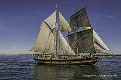 St.Lawrence II - with her black & gold. (gregoryscottclarke photography) Tags: brockville tallships sails masts galleon cannonsfire