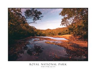 Cliff top views Royal national park
