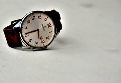 """""""Watch"""" this picture (simonclaeye) Tags: watch time festina nikon nikond nikond7000 tryout closeup brown"""