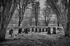 Last Gathering (Ger208k) Tags: ireland mayo mountfalconestate cemetary graveyard graves tombstone restingplace poplars ir infrared blackandwhite landscape gothic gerardmcgrath