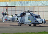 ZZ384 Agusta AW159 Wildcat AH.1 of the Army Air Corps (SteveDHall) Tags: aircraft airport aviation airfield aerodrome helicopter military army armyaircorps aac marines royalmarines westland wildcat 2018 blackpool blackpoolairport bpl blk egnh hangar3 zz384 agustaaw159wildcatah1 agusta aw159 ah1 agustaaw159 wildcatah1 aw159wildcat