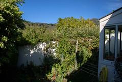 Blue Skys to the East (Jocey K) Tags: newzealand akaroa bankspeninsula nikond750 garden trees plants sky houses