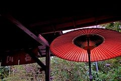 The approach (tez-guitar) Tags: road temple kyoto parasol spring ohara pentax pentaxart