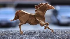 Horse (Marcos Origami) Tags: origami origamiart origamilatino origamilatinoamerica papiroflexia paper paperart craftpaper craft handmade horse animal roman diaz brown caballo canon art artwork macro