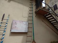 Museo di Criminalogia Medioevale - Via del Castello, San Gimignano - The Garden - Ladders (ell brown) Tags: sangimignano italy italia tuscany toscana smallwalledmedievalhilltown provinceofsiena townoffinetowers medievalarchitecture historiccentreofsangimignano worldheritagesite unescoworldheritagesite museoleonardomacchinedaguerra museodellatortura museocriminalemedioevale viadelcastello museocriminalemedioevalesangimignano museodellatorturaospitainanteprimaleonardodavincigeniomilitaremacchinedaguerraagrandezzanaturale torturemuseumhostedinpreviewleonardodavincimilitarygeniuswarmachinestonaturalsize museumoftorture leonardowarmachinesmuseum museodicriminalogiamedioevale leonardodavinci leonardodavinciswarmachines museostoricodellatorturastrumentiditorturadallepocaromanaaigiorninostri historicalmuseumoftortureinstrumentsoftorturefromtheromaneratoourdays ladder ladders catapults steps