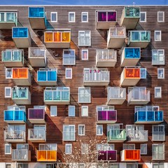 Blooming Life (Paul Brouns) Tags: architecture architectuur architektur building facade amsterdam holland netherlands balcony balconies colorful colors colourful colours rhythm blooming tree magnolia wozoco west paulbrouns paulbrounscom paul brouns