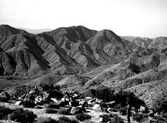 Austere Grandeur (Scott Holcomb) Tags: joshuatreenationalpark california hasselblad500c carlzeisssonnar14f150mmlens zenzabronica67mmso56•2cya3filteradapter efker50film blackwhite 120film 6x6 mediumformat epsonperfectionv600 photoshopdigitalization