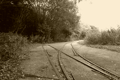 Old track at Barnsley Main colliery  July 2018 (dave_attrill) Tags: barnsley main colliery doncasterroad coal mining industry abandoned site closed july 2018 track railway narrowgauge woodyard sepia dearnevalley dearne southyorkshire yorkshire remains listed building structure coalfield