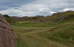 Spot the horse! (Anders_3) Tags: ogna hå jæren rogaland norge norway nikon nature landsacape sky horse green rock 7s61336v2 field farmland rural d700