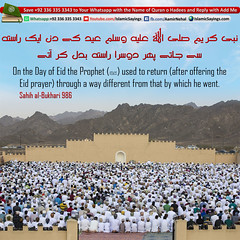 Prophet-pbuh-used-to-return-after-offering-the-Eid-prayer-through-a-way-different (aamirnehal) Tags: quran hadees hadith seerat prophet jesus moses book aamir nehal love peace quotes allah muhammad islam zakat hajj flower gift sin virtue punish punishment teaching brotherhood parents respect equality knowledge verse day judgement muslim majah dawud iman deen about son daughter brother sister hadithabout quranabout islamabout riba toheed namaz roza islamic sayings dua supplications invoke tooba forgive forgiveness mother father pray prayer tableegh jihad recite scholar bukhari tirmadhi
