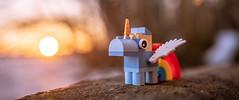 21/52 - Wealth (Reiterlied) Tags: 1835mm angle d500 dslr lego legography lens nikon photography rainbow reiterlied sigma stuckinplastic toy unicorn wide