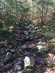 On the Mount Mansfield trail, Stowe, Vermont (Miche & Jon Rousell) Tags: usa fall autumn vermont stowe mountmansfield smugglersnotch statepark leaves red yellow orange trees hiking trail skiing skiresort
