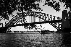 Sydney (Bill Thoo) Tags: sydney nsw australia newsouthwales bridge harbour sydneyharbour sydneyharbourbridge harbourbridge landscape city urban architecture engineering monochrome bnw blackandwhite film analog analogue filmphotography analogphotography analoguephotography 35mm 35mmfilm 35mmfilmphotography filmcamera leica m6 leicam6 voigtlander voigtlandercolorskopar voigtlandercolorskoparpii3525 3525 jch japancamerahunter streetpan jchstreetpan jchstreetpan400 streetpan400 iso400 blackandwhitefilmphotography monochromefilmphotography