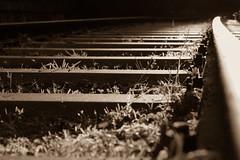 Attention au départ ! (Nadia (no awards please !)) Tags: marcenais rail railway sepia ombres shadows lumière light
