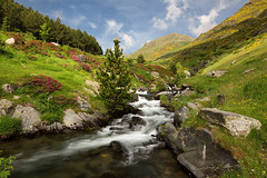 A Summer Landscape (magomu) Tags: rio riu filià nd filter filtro lee