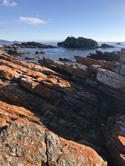 These things have always been the same (Keith Midson) Tags: boat harbour tasmania shore coast rocks rocky water sea ocean shoreline